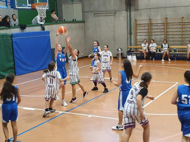 vertematese settimo basket femminile
